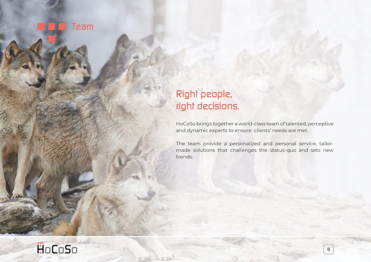 HOSPITALITY CONSULTANT Hocoso Brochure Team Intro