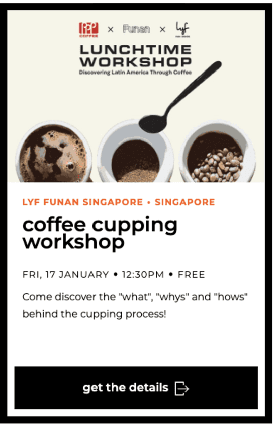 coffee cupping workshop - Coliving concept Workshop HoCoSo