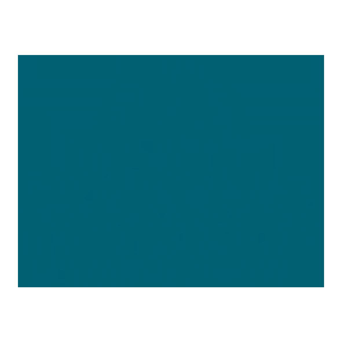 EHL logo HoCoSo Track record